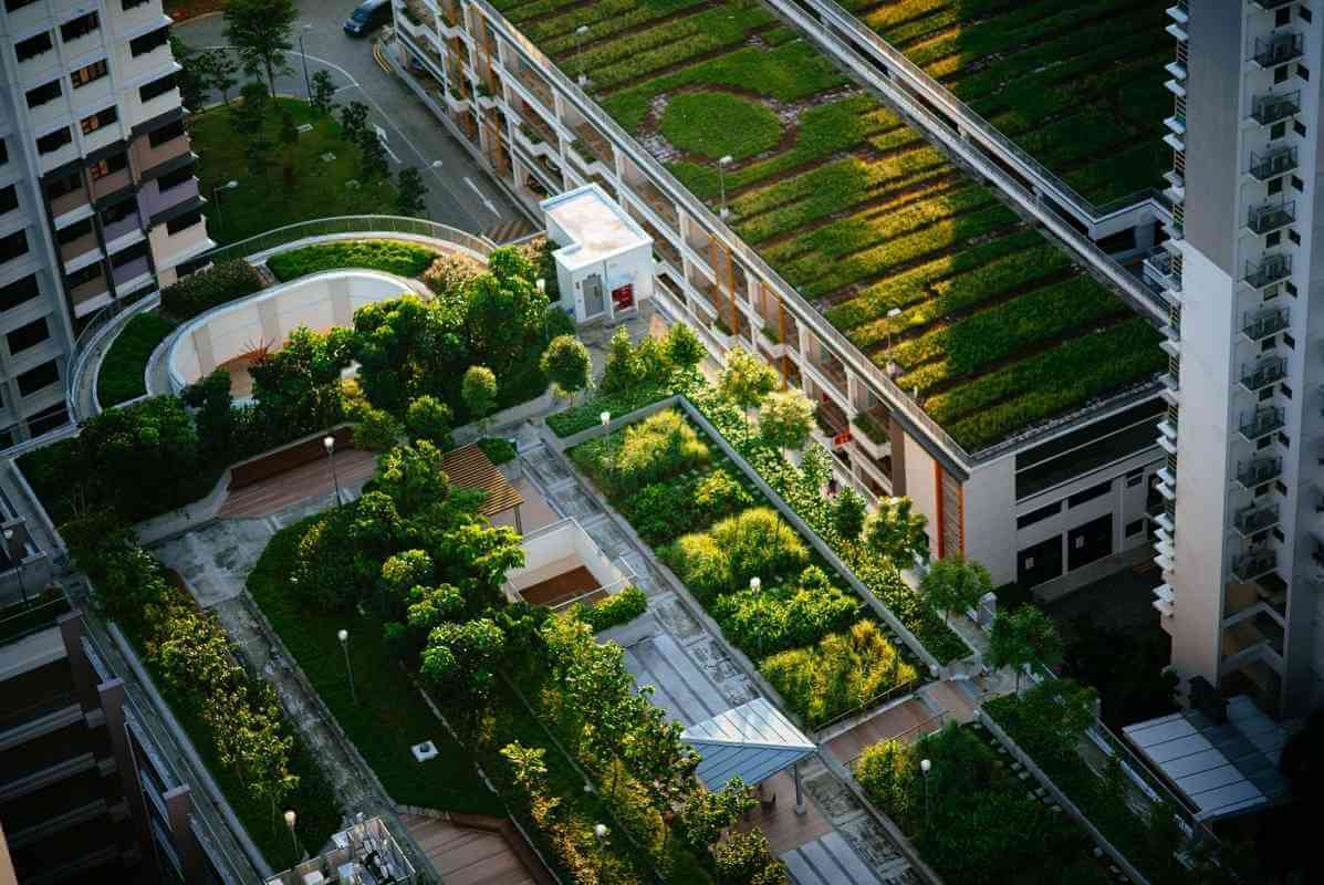 LafargeHolcim to focus on green roofs